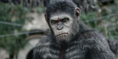 LA GUERRA DEL PLANETA DE LOS SIMIOS  noticia: Sinopsis simiesca