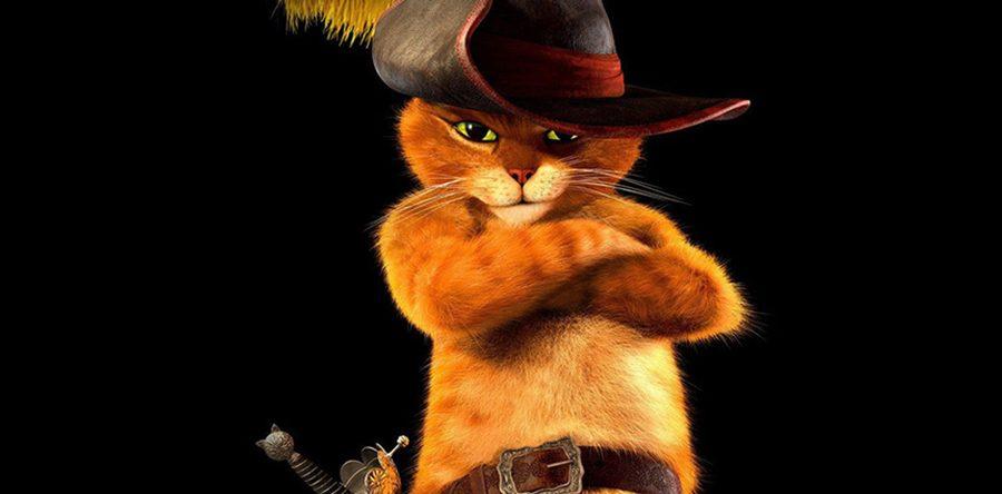 El Gato Web Noticia De 2 Secuela En Cine Con Marcha Gatuna Botas ZZgdw6rWq